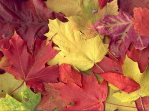 ..páčila by sa mi jesenná výzdoba