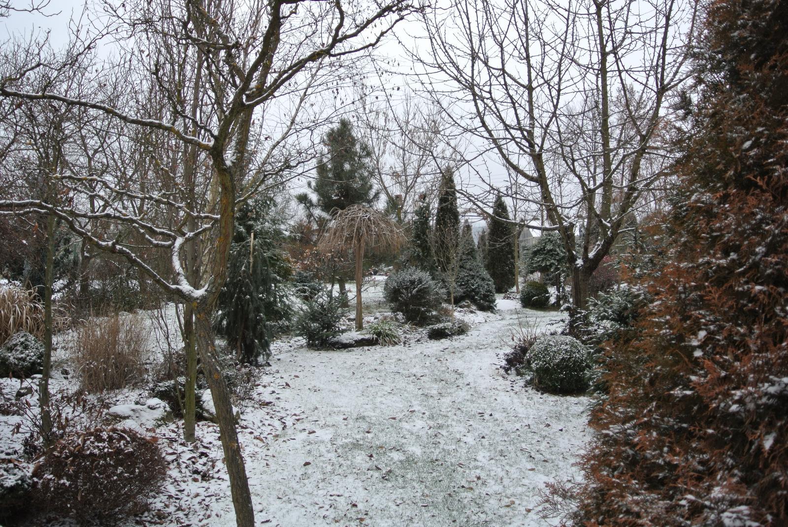 """Okrasná zahrada - můj malý """"ráj"""" - Obrázek č. 1"""