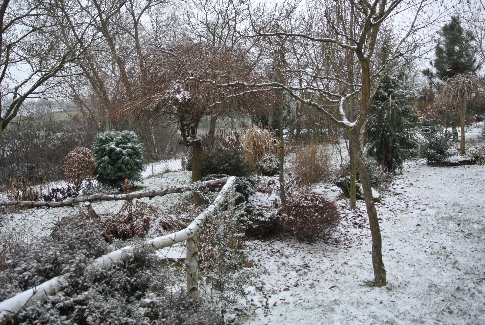 """Okrasná zahrada - můj malý """"ráj"""" - Obrázek č. 2"""