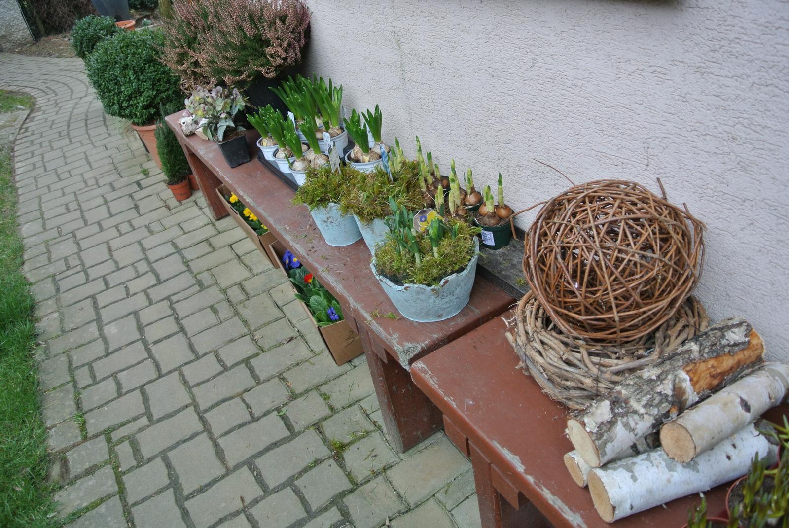 """Okrasná zahrada - můj malý """"ráj"""" - Obrázek č. 11"""
