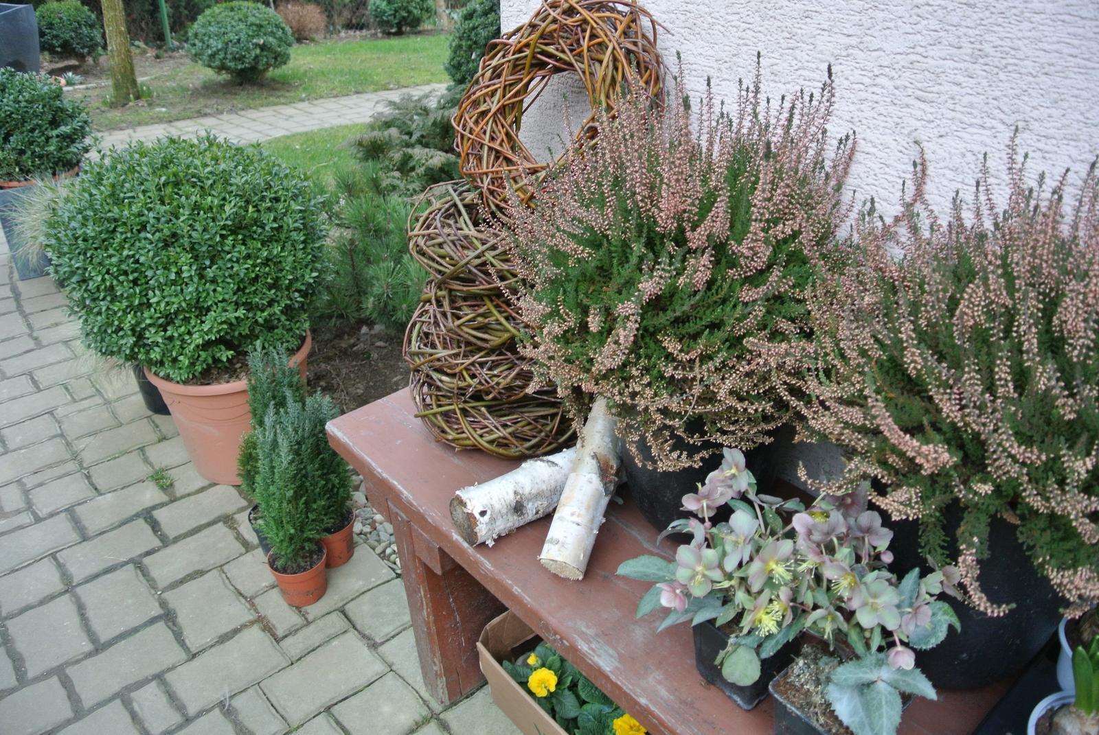 """Okrasná zahrada - můj malý """"ráj"""" - Obrázek č. 13"""