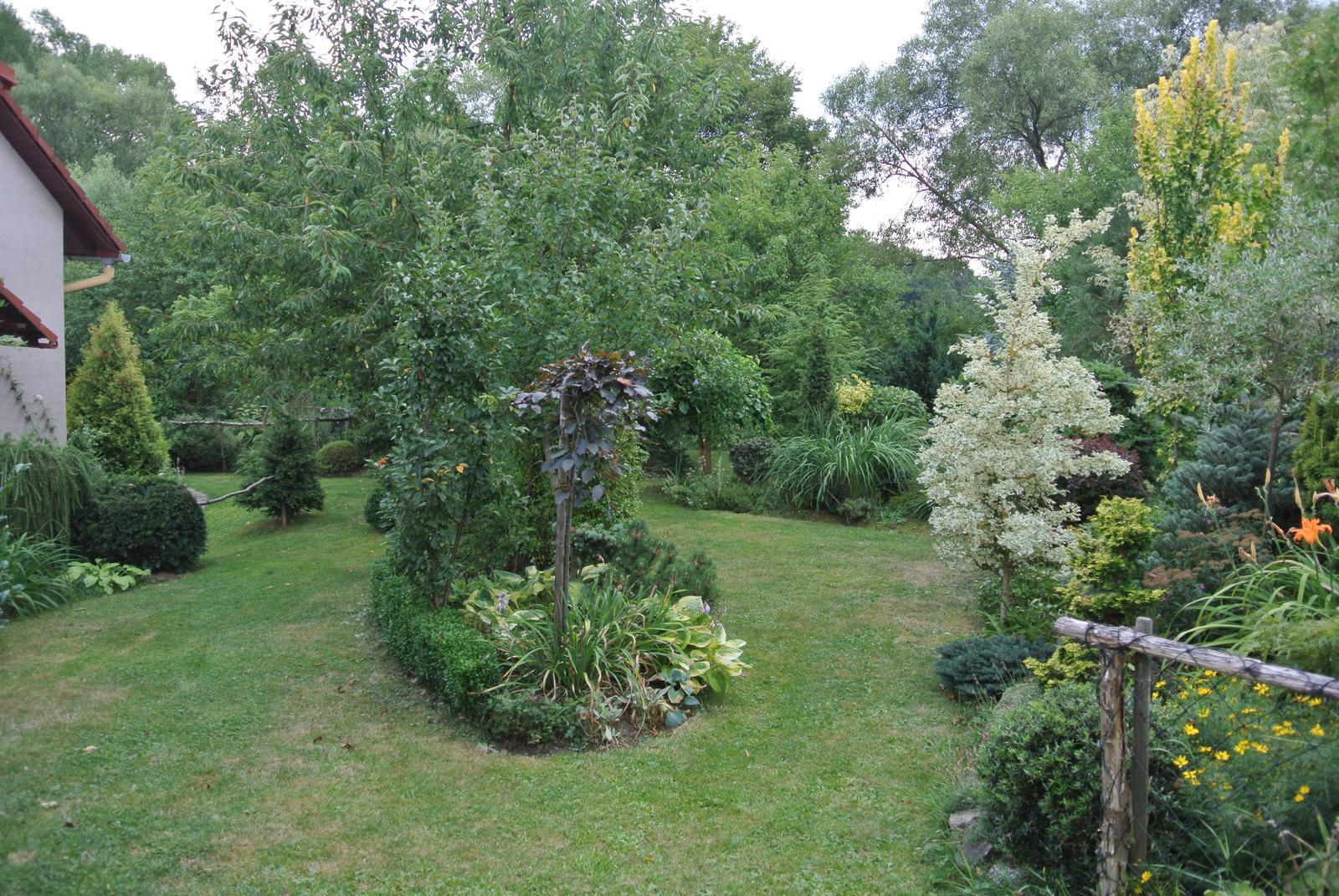 """Okrasná zahrada - můj malý """"ráj"""" - Obrázek č. 17"""