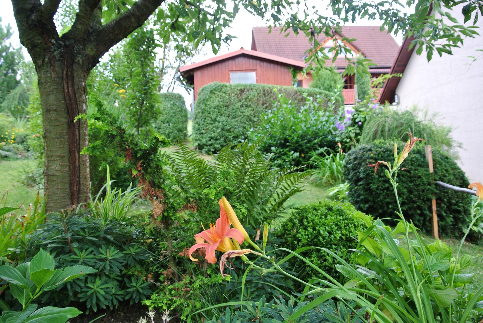 """Okrasná zahrada - můj malý """"ráj"""" - Obrázek č. 19"""