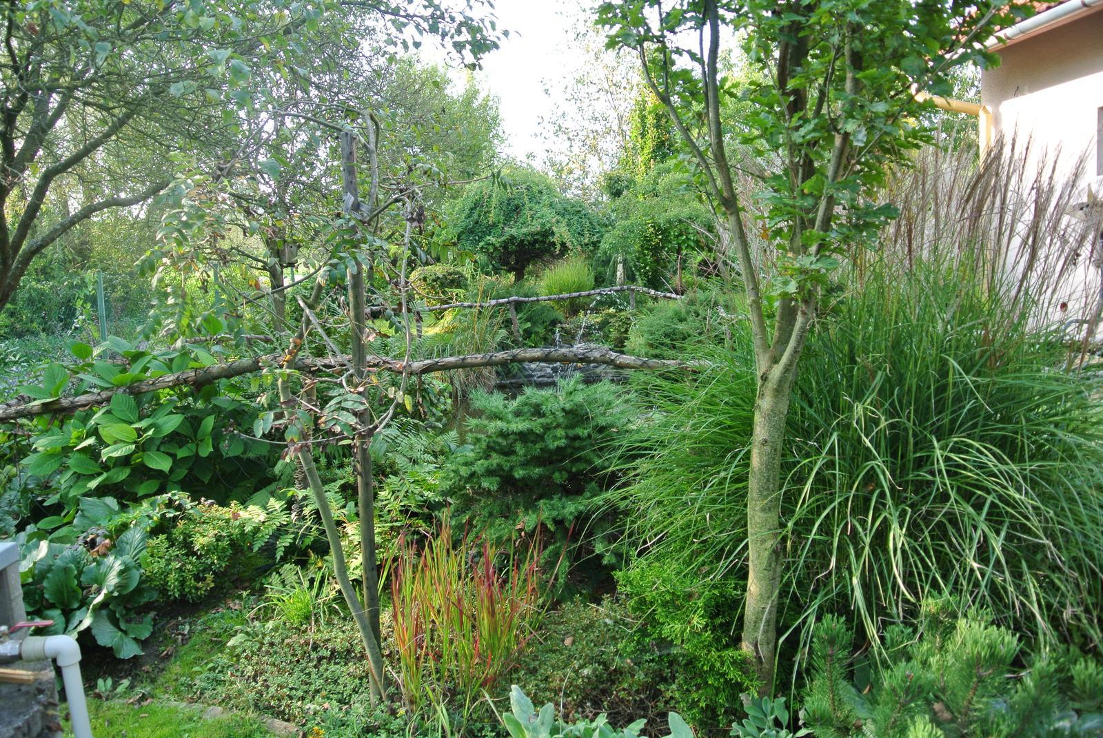 """Okrasná zahrada - můj malý """"ráj"""" - Obrázek č. 22"""