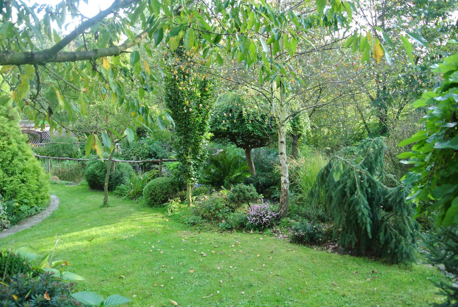 """Okrasná zahrada - můj malý """"ráj"""" - Obrázek č. 27"""
