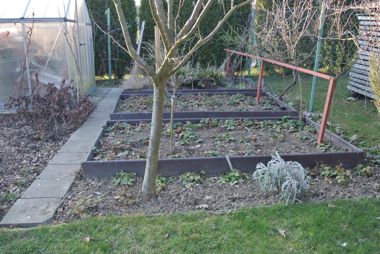 """Okrasná zahrada - můj malý """"ráj"""" - Obrázek č. 35"""