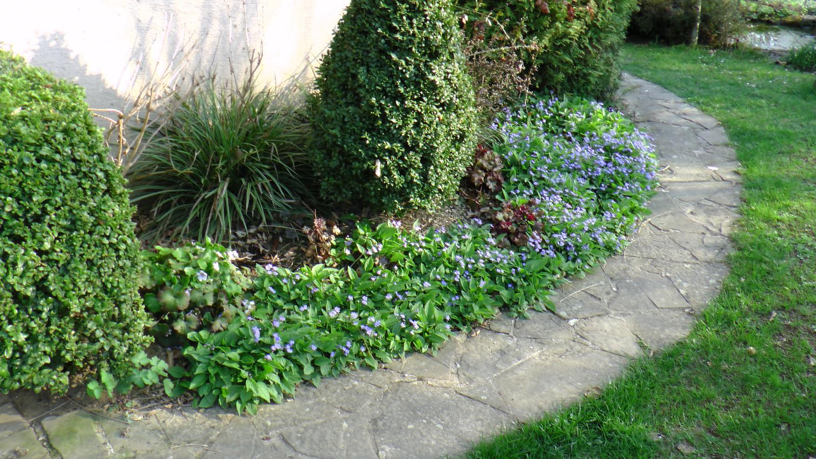 """Okrasná zahrada - můj malý """"ráj"""" - Obrázek č. 39"""