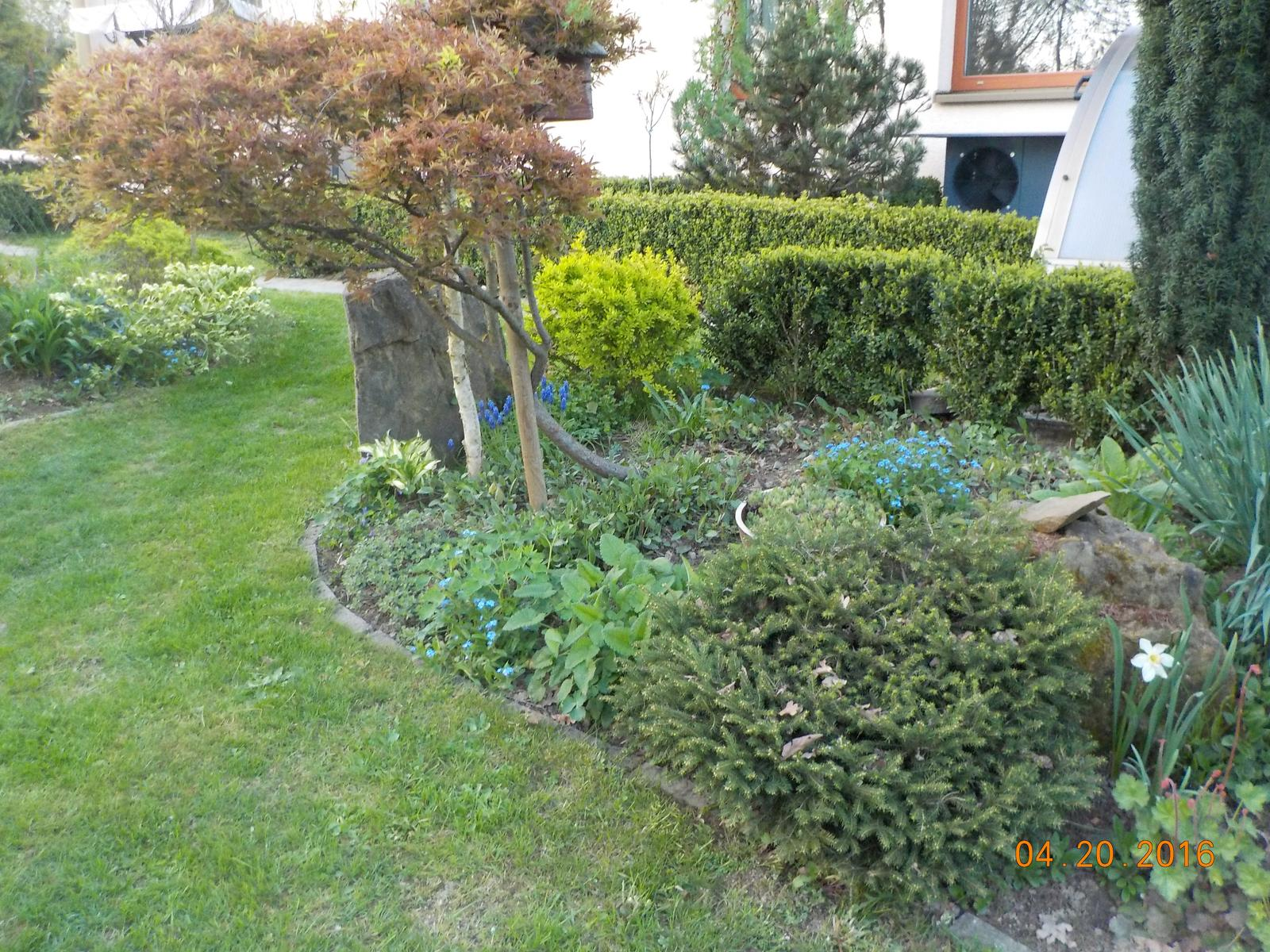 """Okrasná zahrada - můj malý """"ráj"""" - Obrázek č. 48"""