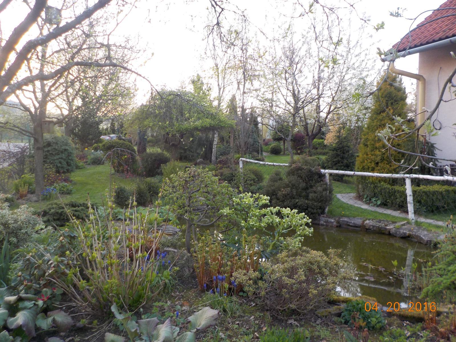 """Okrasná zahrada - můj malý """"ráj"""" - Obrázek č. 53"""