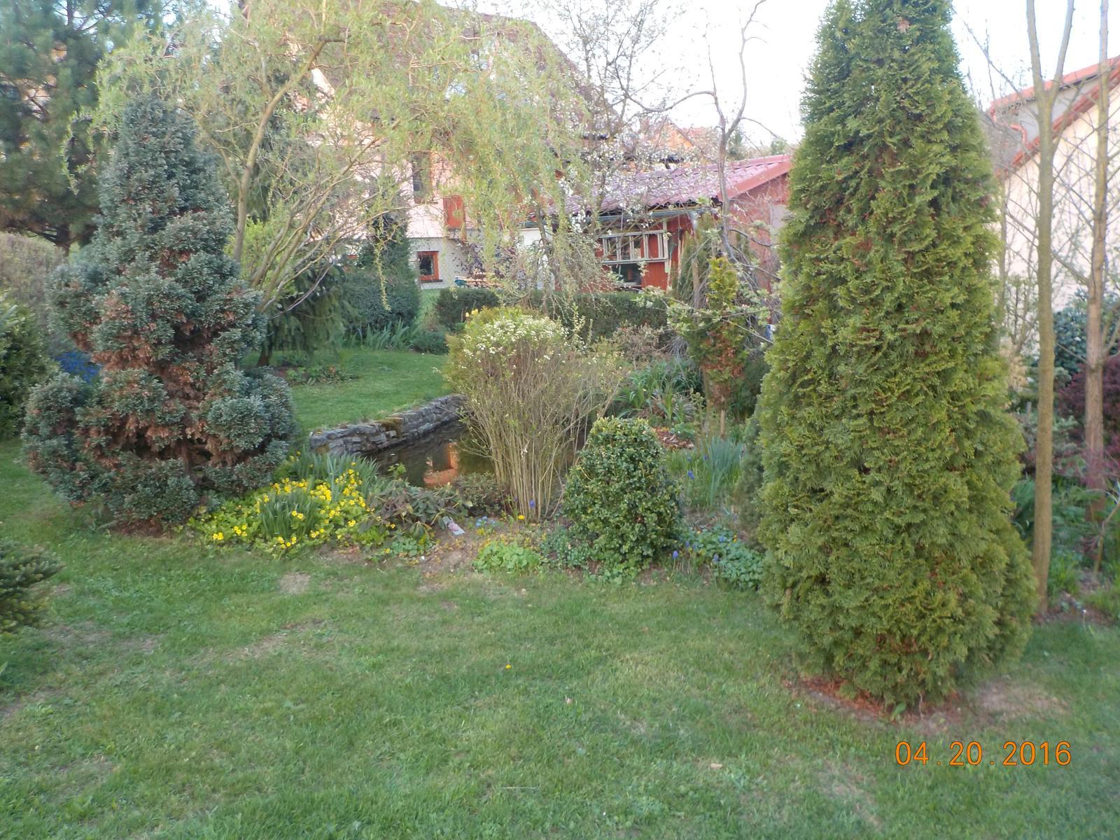 """Okrasná zahrada - můj malý """"ráj"""" - Obrázek č. 54"""