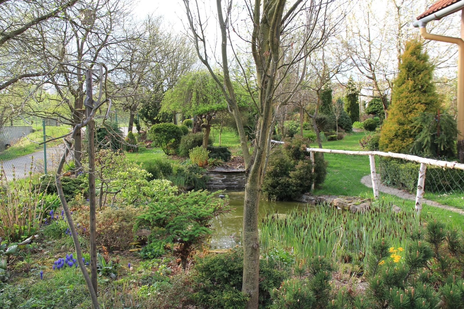 """Okrasná zahrada - můj malý """"ráj"""" - Obrázek č. 64"""