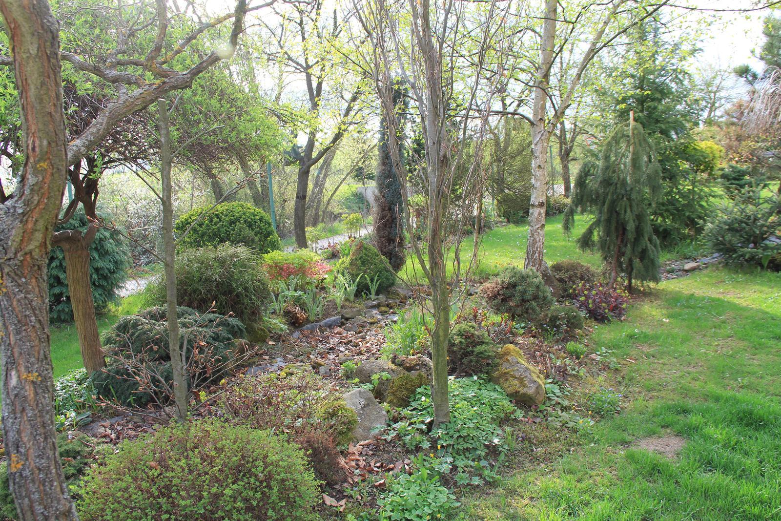 """Okrasná zahrada - můj malý """"ráj"""" - Obrázek č. 67"""