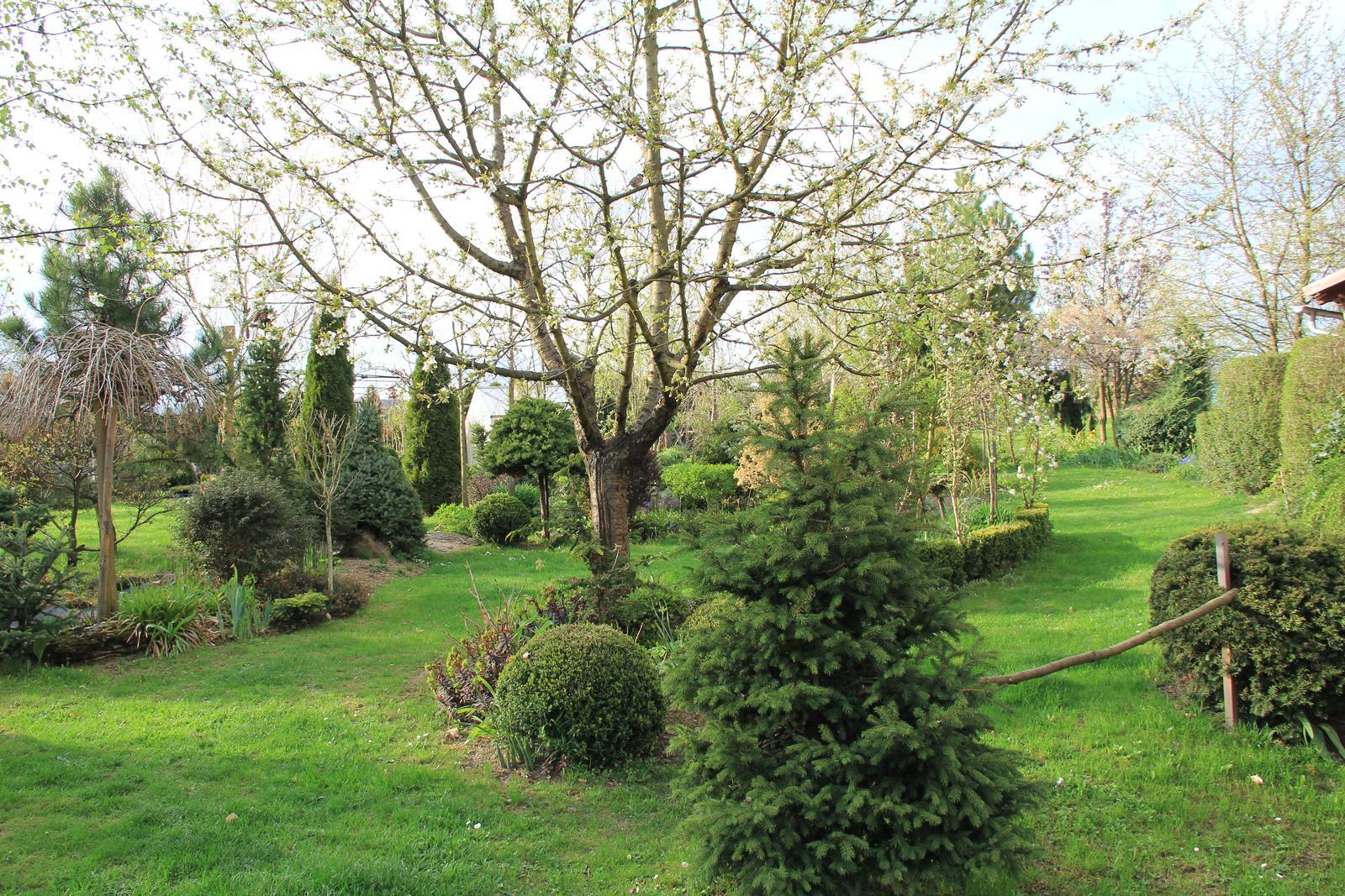 """Okrasná zahrada - můj malý """"ráj"""" - Obrázek č. 69"""