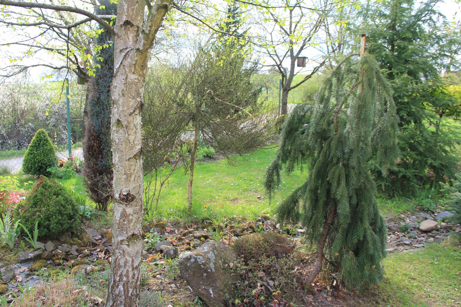 """Okrasná zahrada - můj malý """"ráj"""" - Obrázek č. 71"""