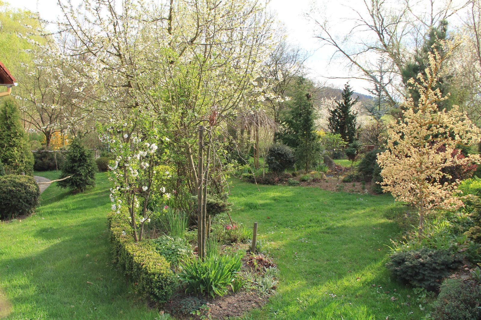 """Okrasná zahrada - můj malý """"ráj"""" - Obrázek č. 78"""