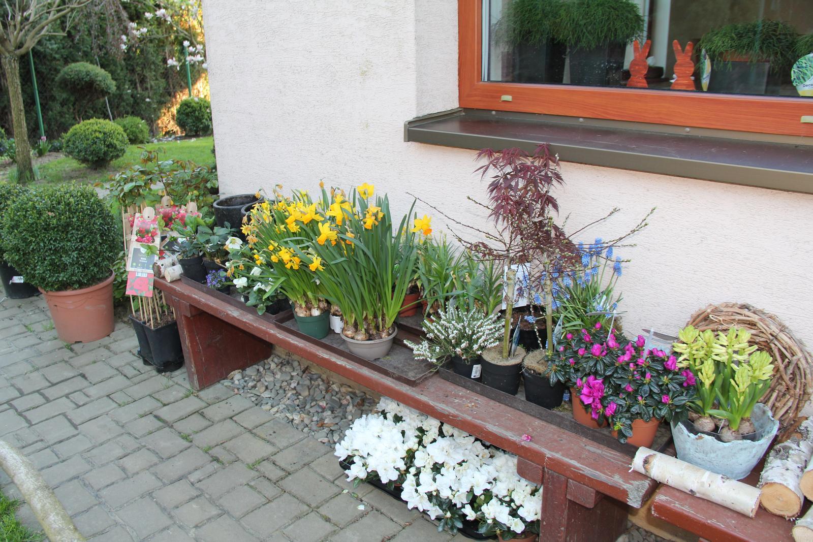"""Okrasná zahrada - můj malý """"ráj"""" - Obrázek č. 87"""