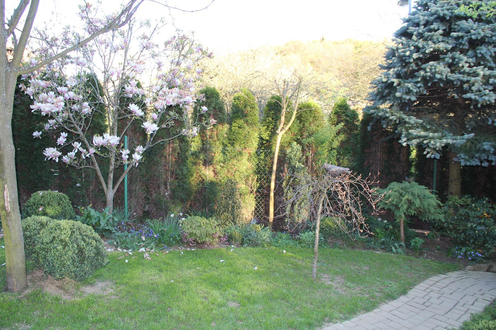 """Okrasná zahrada - můj malý """"ráj"""" - Obrázek č. 92"""