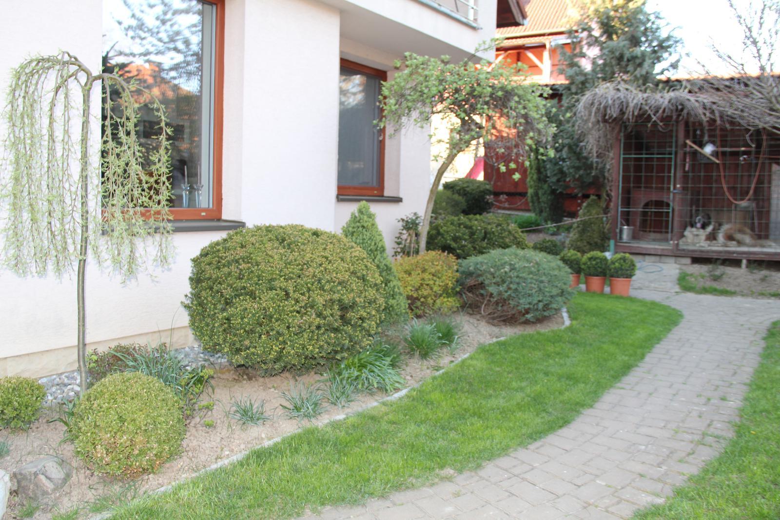 """Okrasná zahrada - můj malý """"ráj"""" - Obrázek č. 94"""