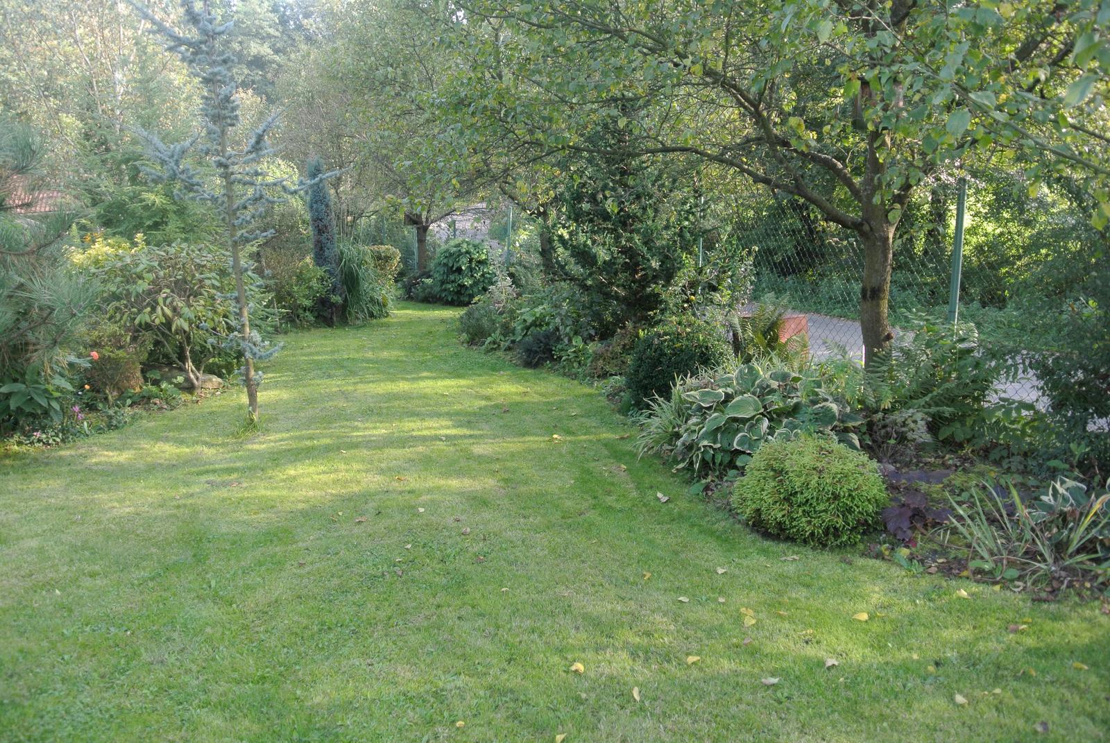 """Okrasná zahrada - můj malý """"ráj"""" - Obrázek č. 98"""