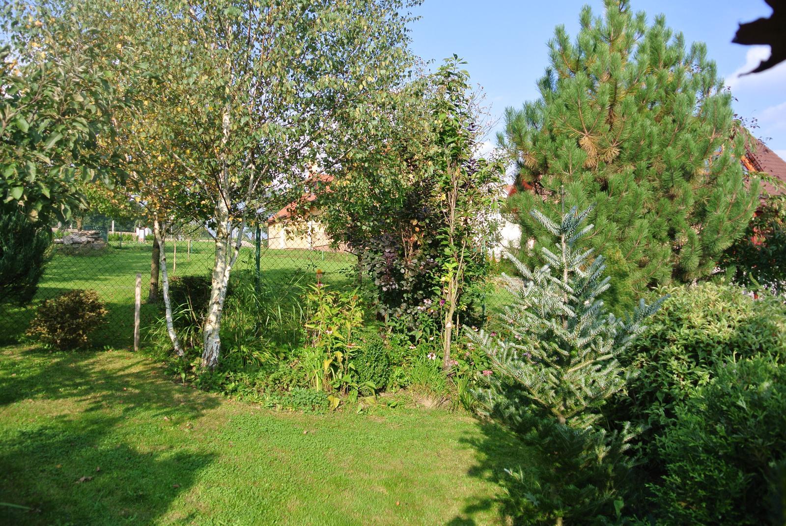 """Okrasná zahrada - můj malý """"ráj"""" - Obrázek č. 100"""