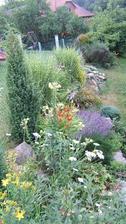 Fotky zahrady z roku 2008