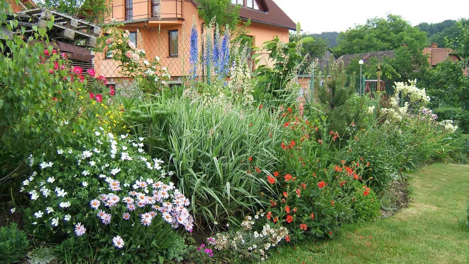 """Okrasná zahrada - můj malý """"ráj"""" - Obrázek č. 133"""