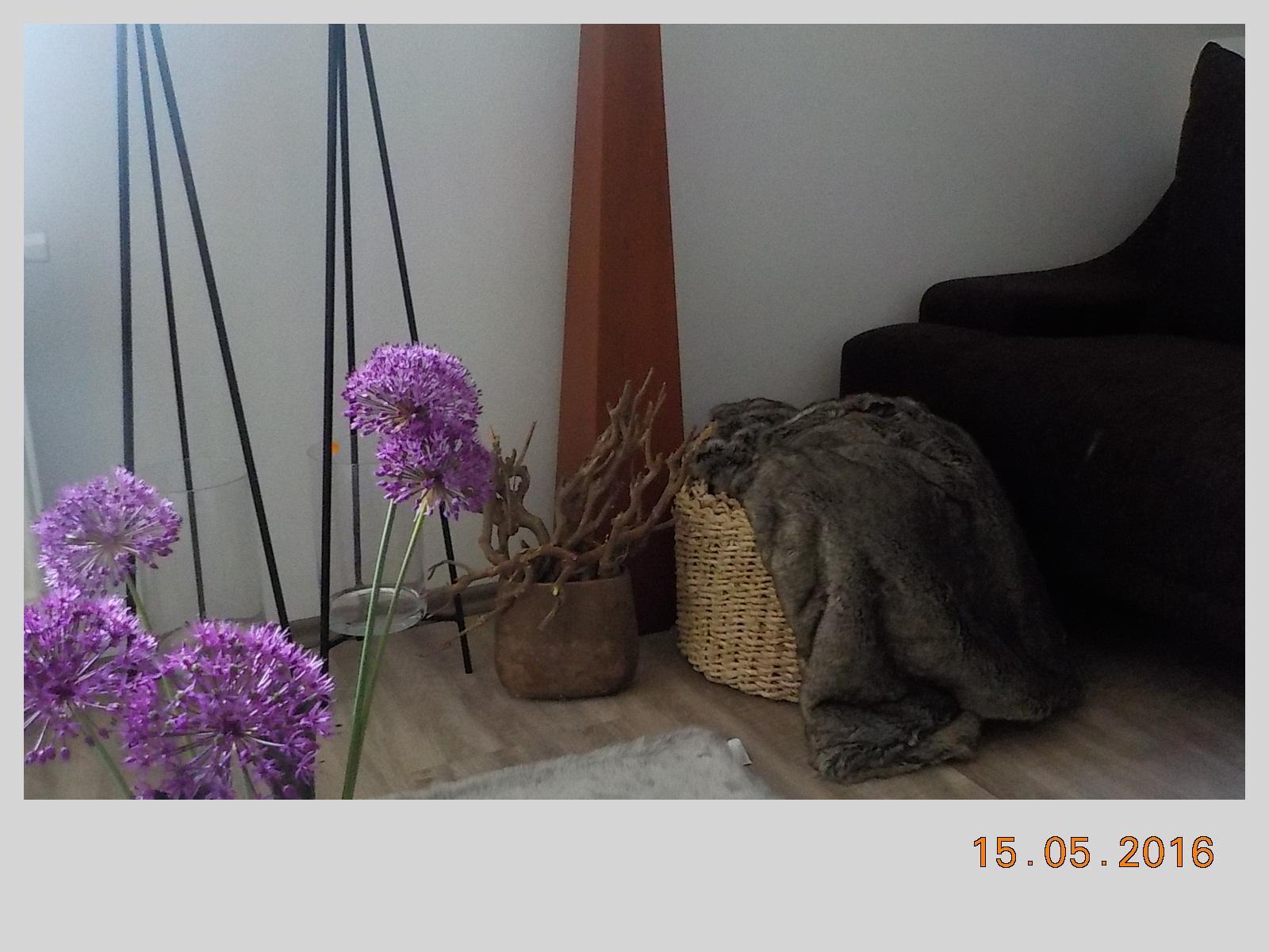 U nás a moje dekorace - Obrázek č. 206