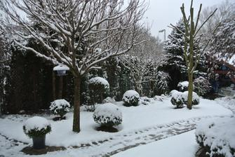 Zima 2016 - tak u nás už sme také zasněžení, jak já bych chtěla radši jaro nebo léto :-)