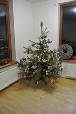 """Letos zase po třech rokoch """"nerozbitný"""" stromeček :-)"""
