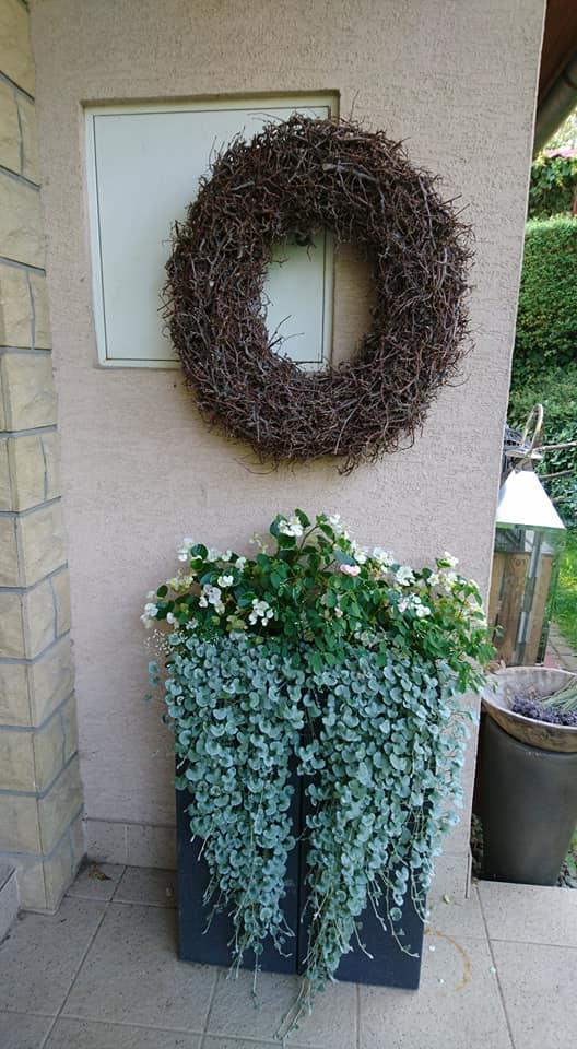 """Okrasná zahrada - můj malý """"ráj"""" - Obrázek č. 360"""