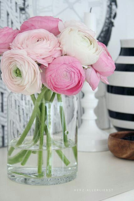 Maisons 💛 jardins 💚 fleurs 💜 - Obrázok č. 11