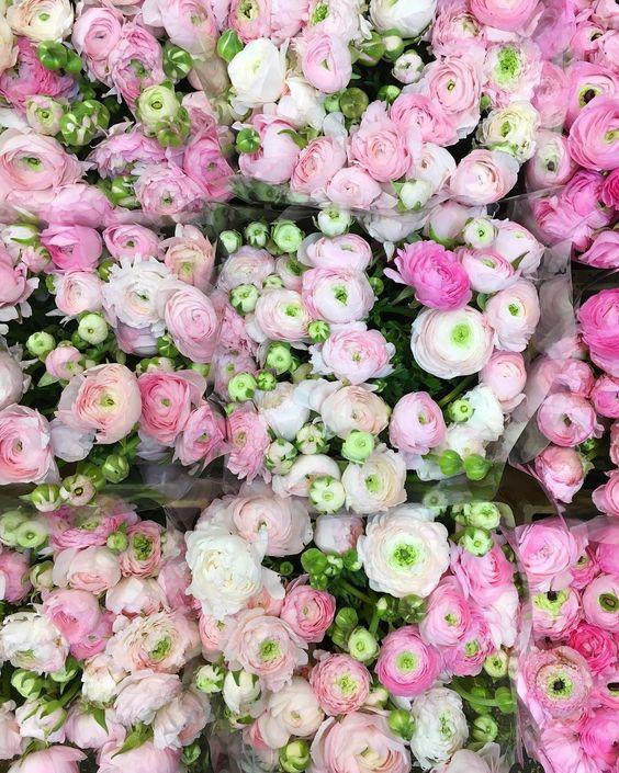 Maisons 💛 jardins 💚 fleurs 💜 - Obrázok č. 6