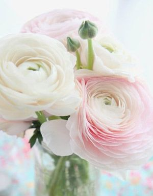 Maisons 💛 jardins 💚 fleurs 💜 - Obrázok č. 9
