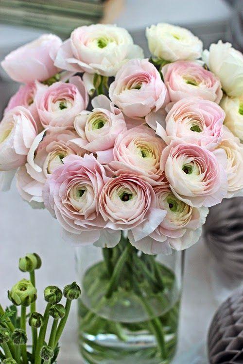 Maisons 💛 jardins 💚 fleurs 💜 - Obrázok č. 7