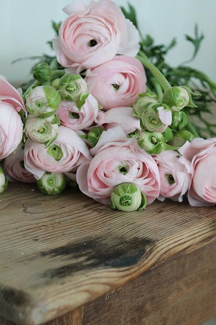 Maisons 💛 jardins 💚 fleurs 💜 - Obrázok č. 8