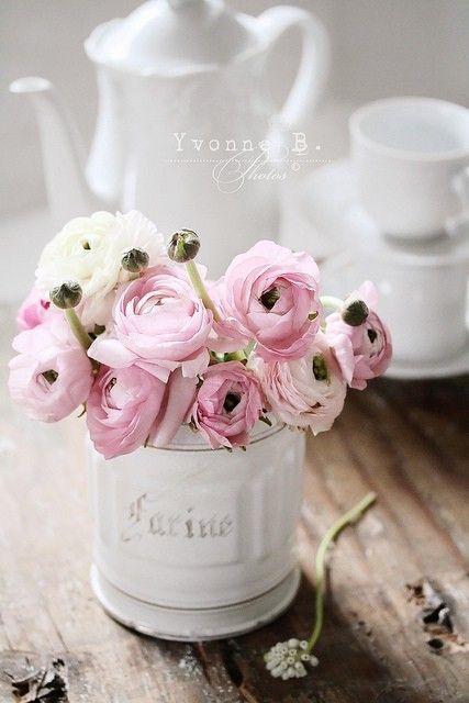 Maisons 💛 jardins 💚 fleurs 💜 - Obrázok č. 13