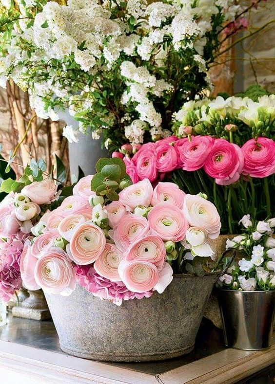 Maisons 💛 jardins 💚 fleurs 💜 - Obrázok č. 15