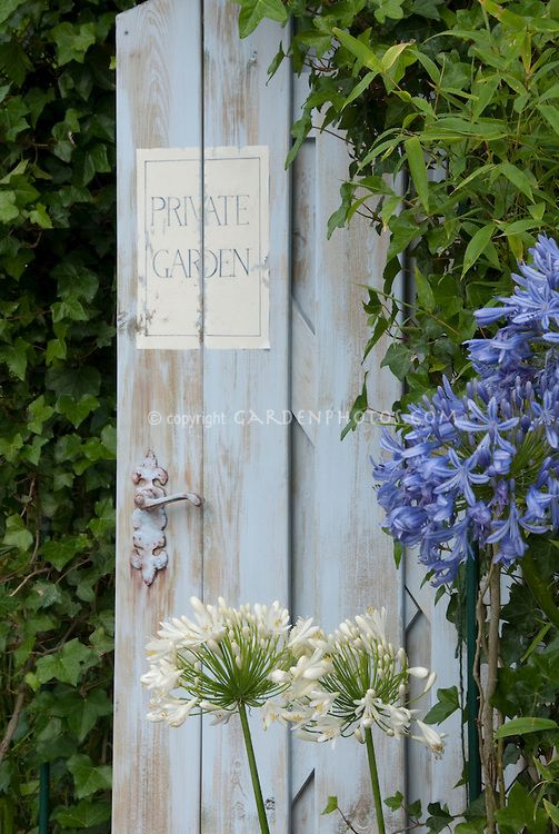 Maisons 💛 jardins 💚 fleurs 💜 - Obrázok č. 1
