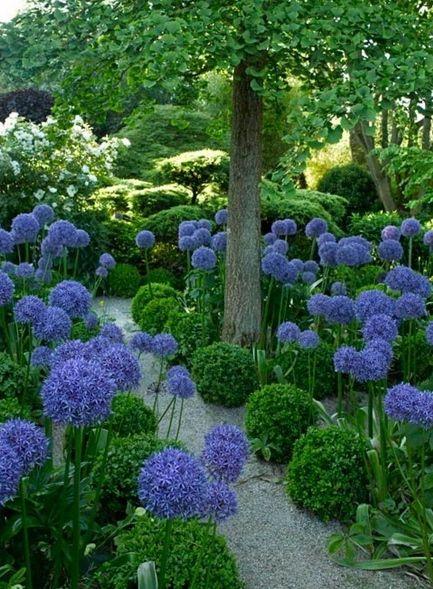 Maisons 💛 jardins 💚 fleurs 💜 - Obrázok č. 76