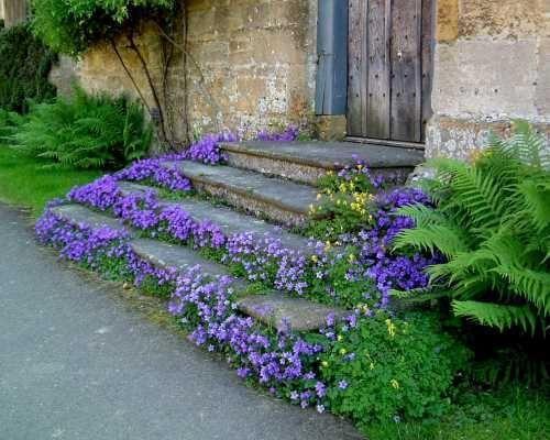 Maisons 💛 jardins 💚 fleurs 💜 - Obrázok č. 43