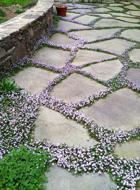 Maisons 💛 jardins 💚 fleurs 💜 - Obrázok č. 45