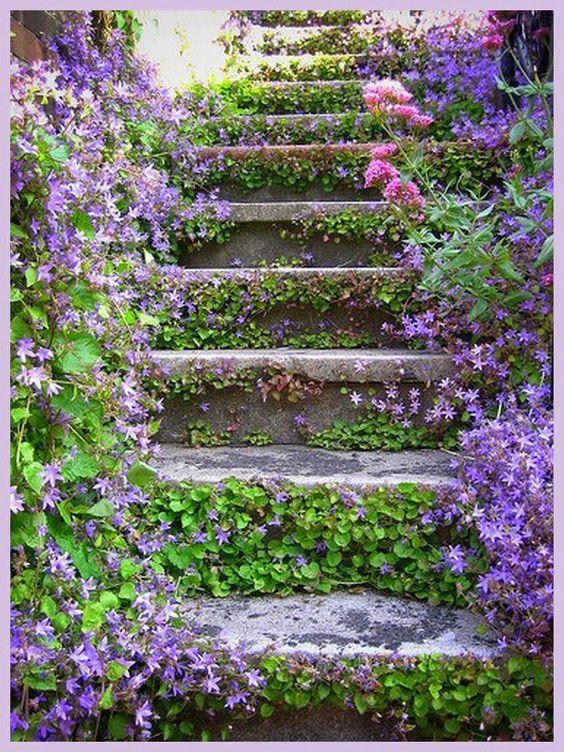 Maisons 💛 jardins 💚 fleurs 💜 - Obrázok č. 47