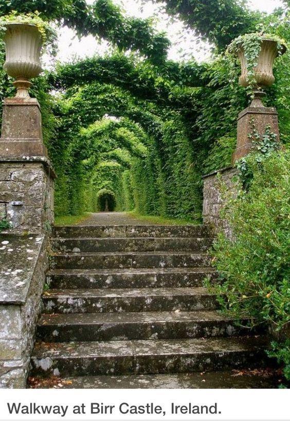 Maisons 💛 jardins 💚 fleurs 💜 - Obrázok č. 56