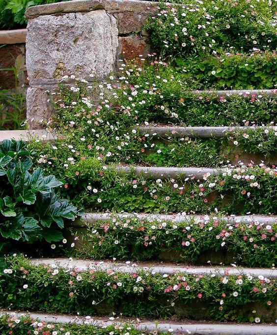 Maisons 💛 jardins 💚 fleurs 💜 - Obrázok č. 44