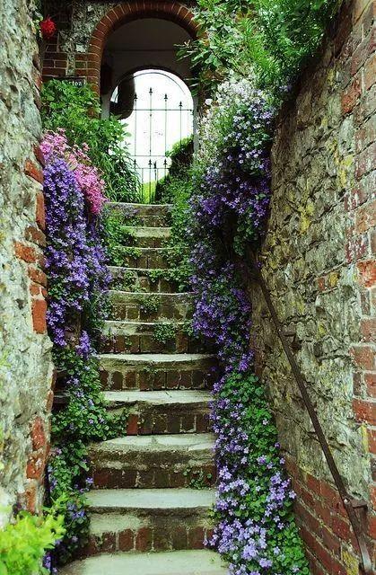 Maisons 💛 jardins 💚 fleurs 💜 - Obrázok č. 54