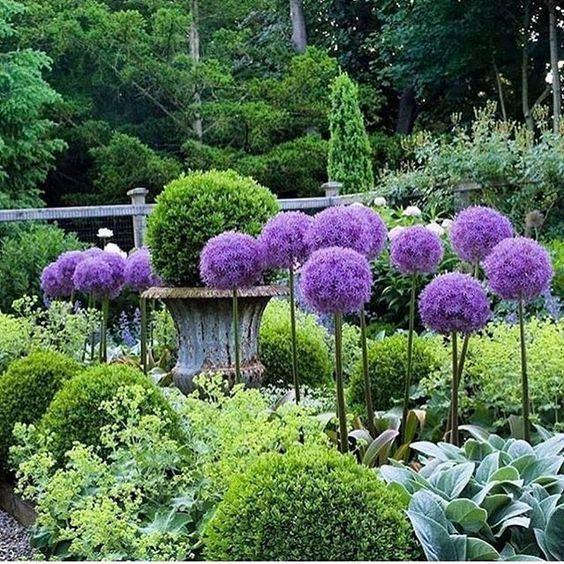 Maisons 💛 jardins 💚 fleurs 💜 - Obrázok č. 77