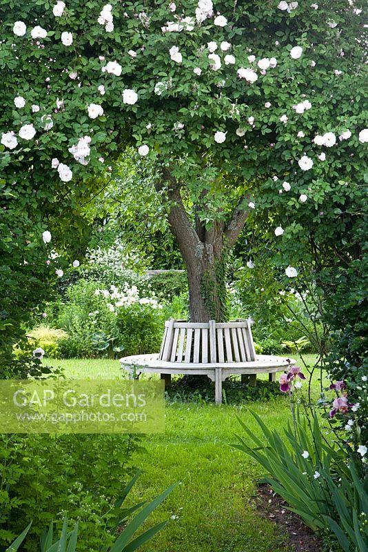 Maisons 💛 jardins 💚 fleurs 💜 - Obrázok č. 32