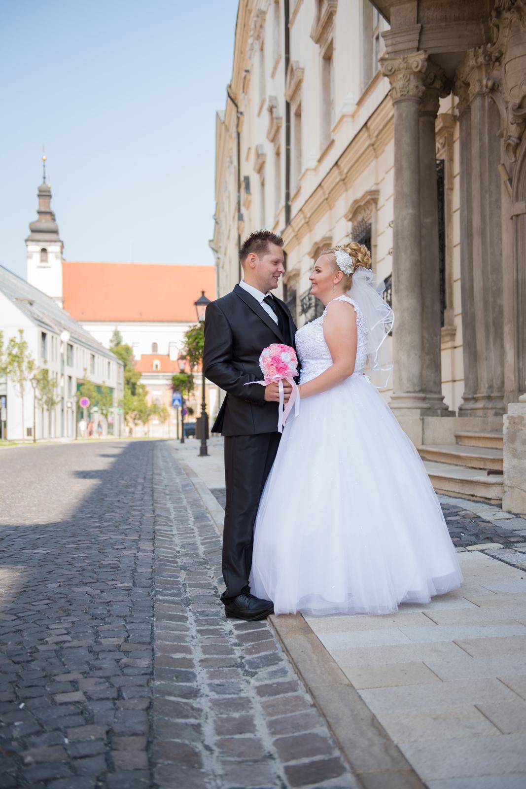 Radka a Michal - Obrázok č. 3