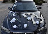 899,-   Komplet obsahuje - sisalové dvojsrdce zdobené květinami a příslušenství - velkou dekoraci - 2 střední dekorace - 7 sedm menších dekorací pro jakékoliv umístění na autě (kapota, kufr, kliky dveří, atd.)