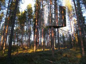 A takto sa bude hrať na schovávačku v lese...tu je hotelová izba priam nerozpoznateľná